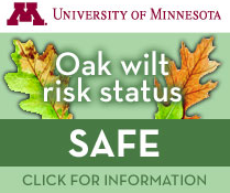 Oak Wilt Risk